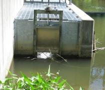 quance-dam-fish-passage6